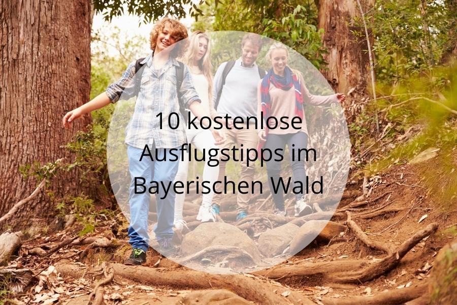 10 kostenlose Ausflugstipps im Bayerischen Wald