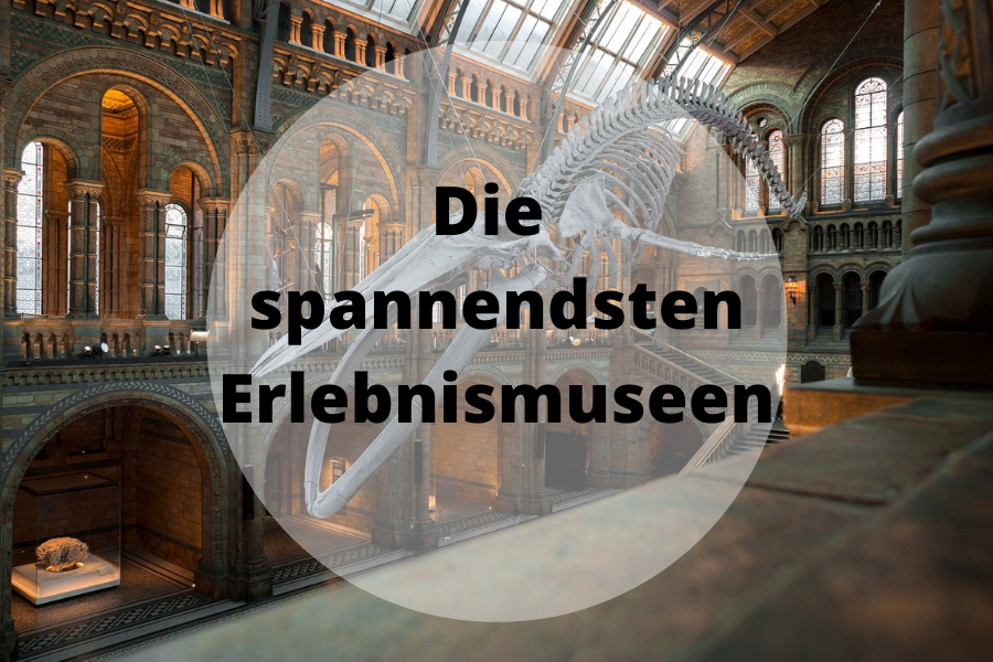 Die besten Aussichtspunkte in Deutschland-8